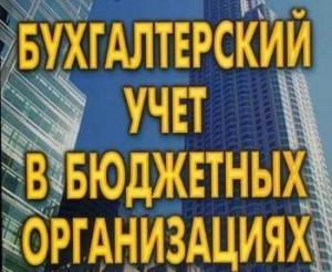 Бухгалтерский учет в бюджетных органиазациях - Аудит Эксперт